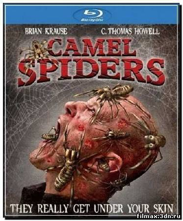 Верблюжьи пауки / Camel Spiders (2012) HDRip