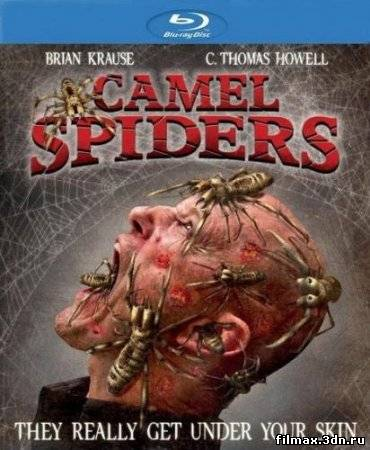 Верблюжьи пауки / Camel Spiders (2012) Онлайн / online